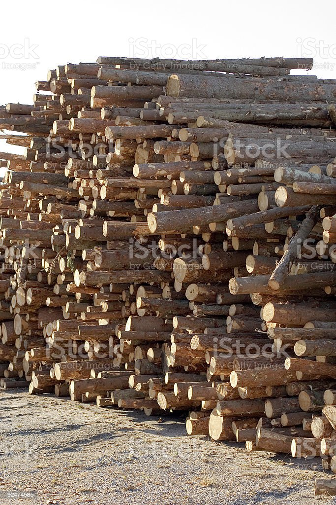 Forest industry log pile royalty-free stock photo