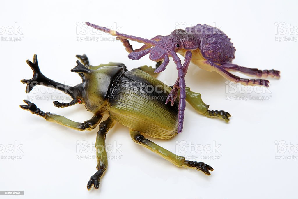 Forest insect toy royalty-free stock photo
