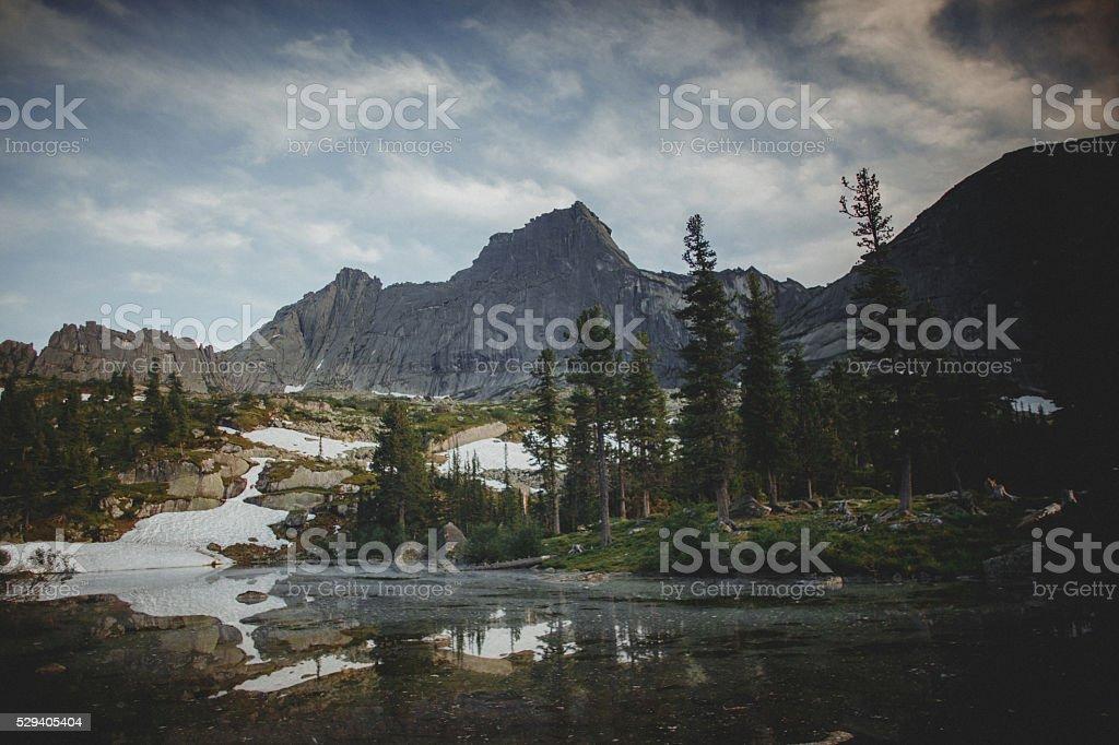 Forest Lake mountains. Summer photo. Natural Park Ergaki stock photo