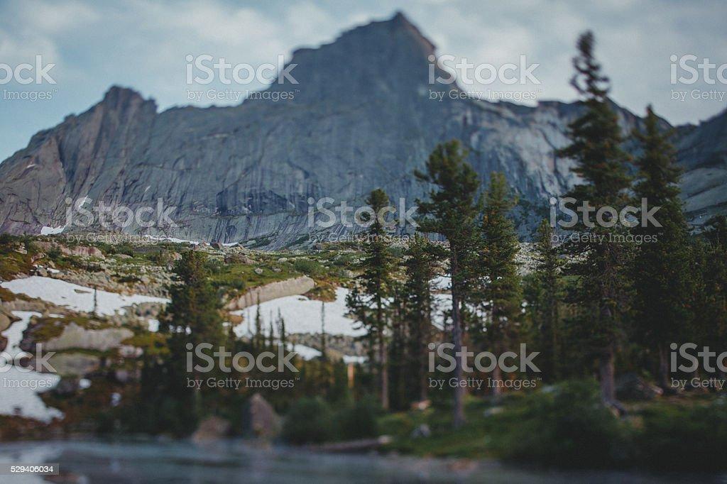 Forest Lake mountains. Tilt-shift effect. Natural Park Ergaki stock photo