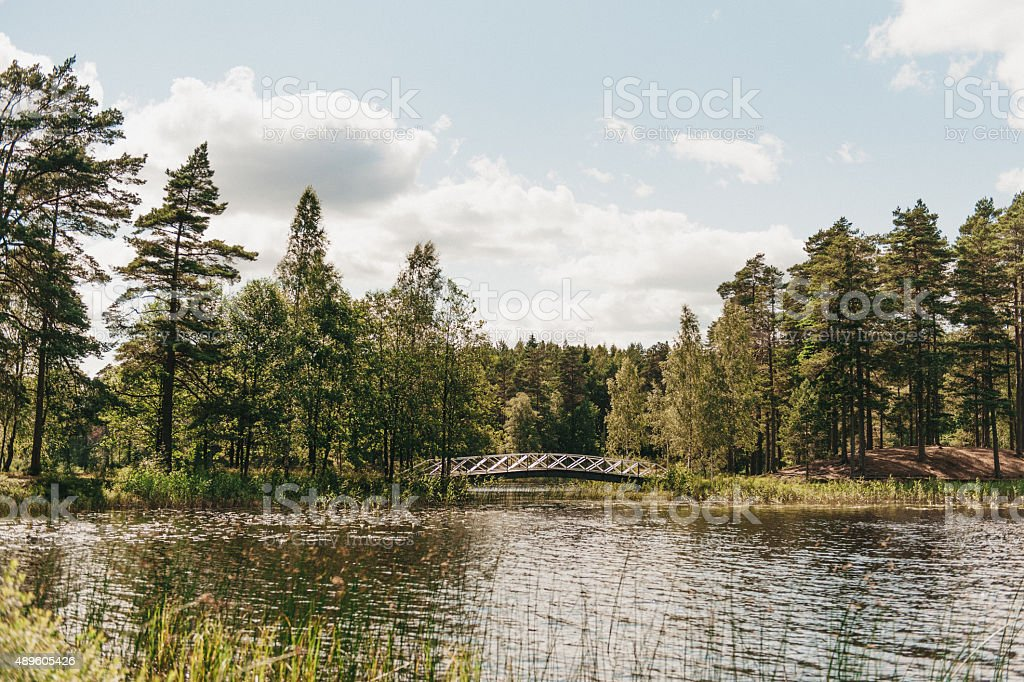 Forest lake with a small bridge between islands. stock photo