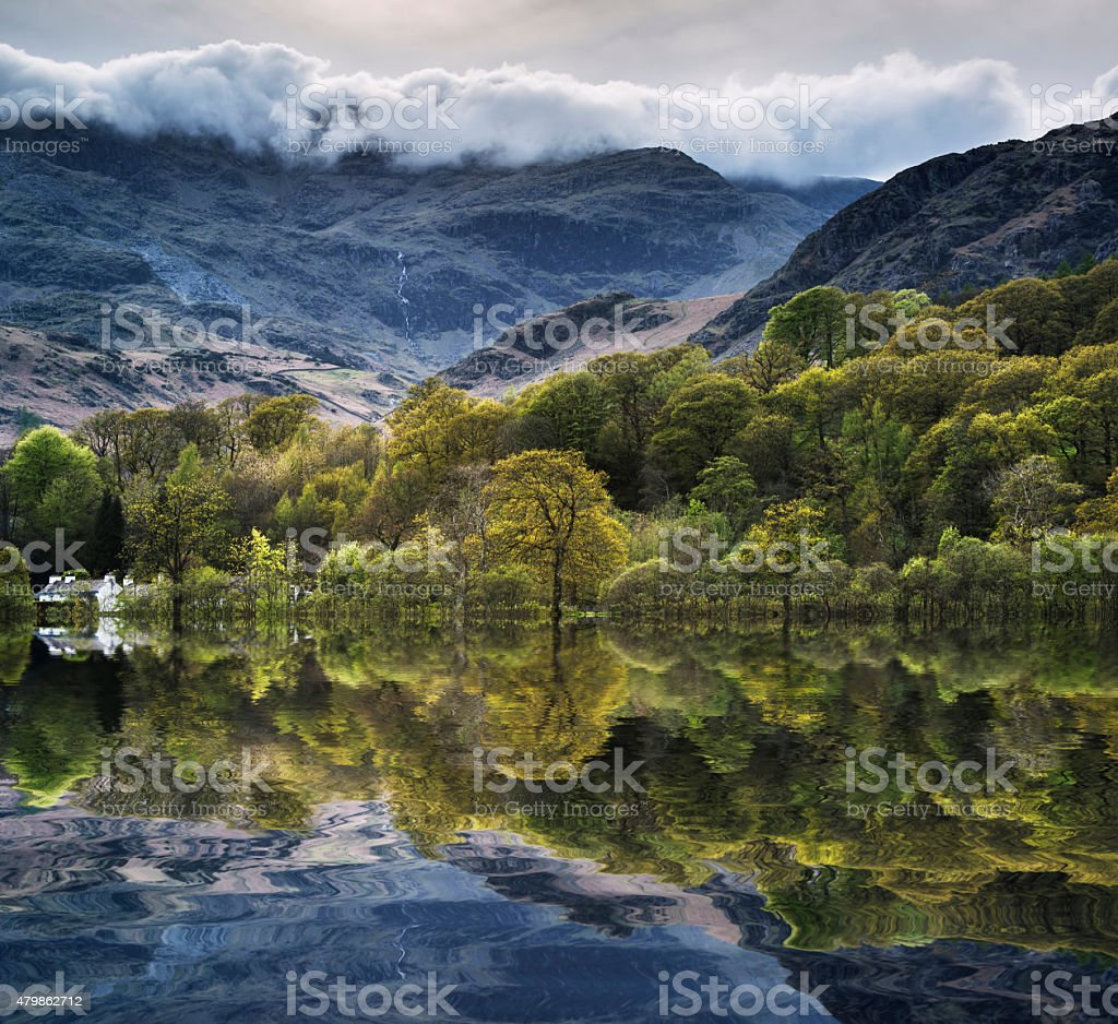 Forest landscape reflected in Consiton Water in Lake District stock photo