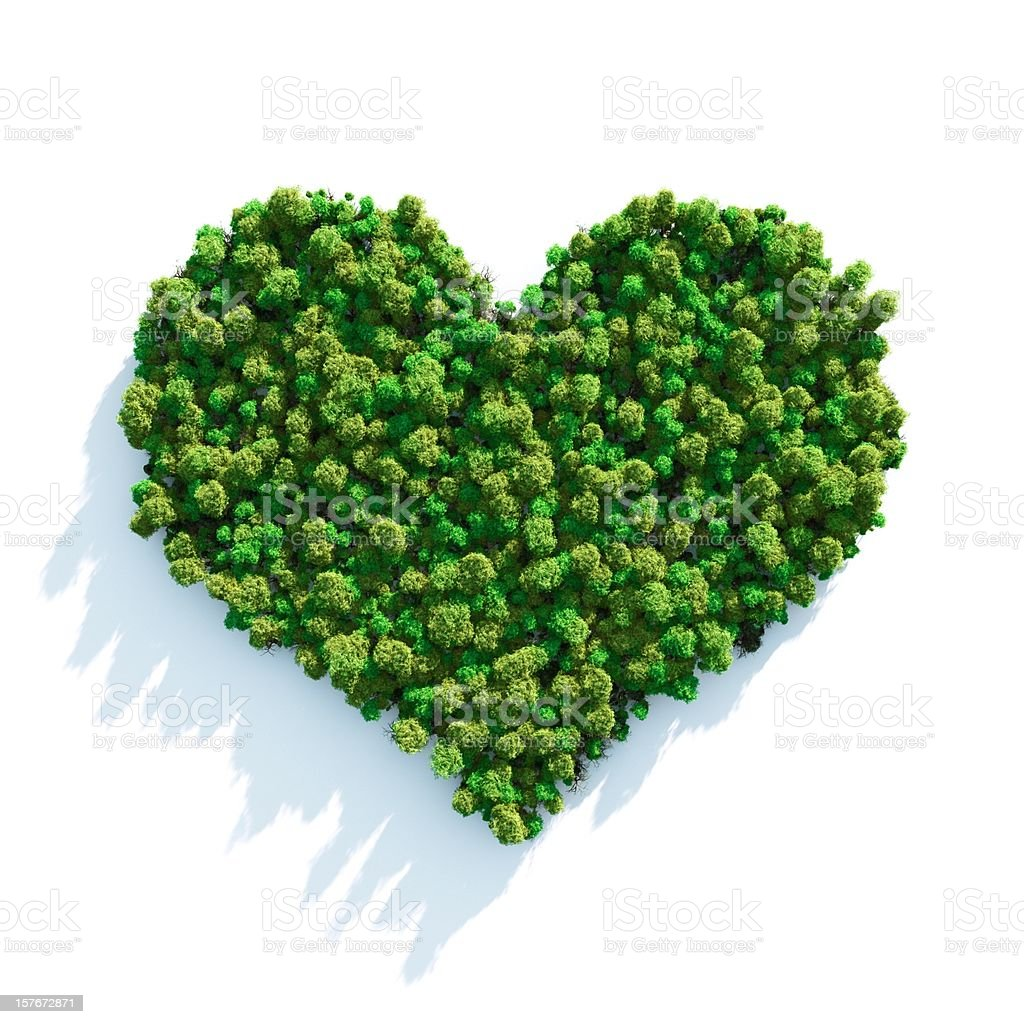 Forest Love royalty-free stock photo