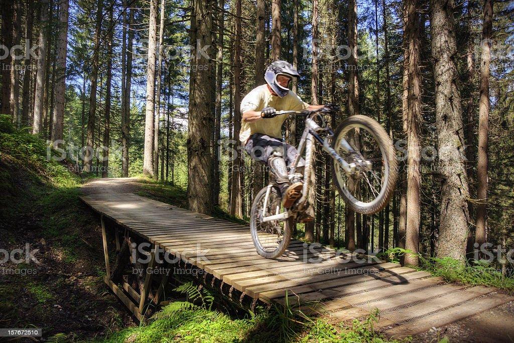Forest Mountain Biker stock photo