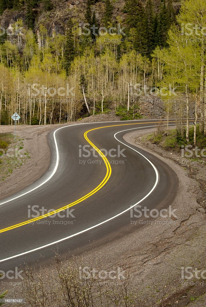 forest mountain road landscape with aspen trees stock photo