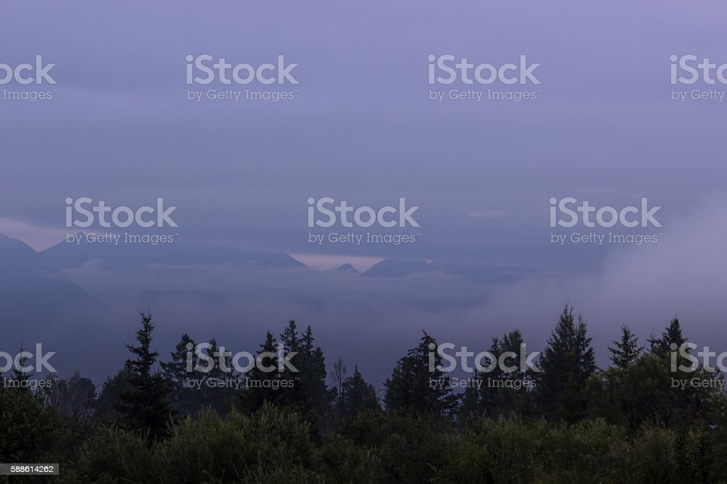 forest mountains in the background shrouded in mist. stock photo