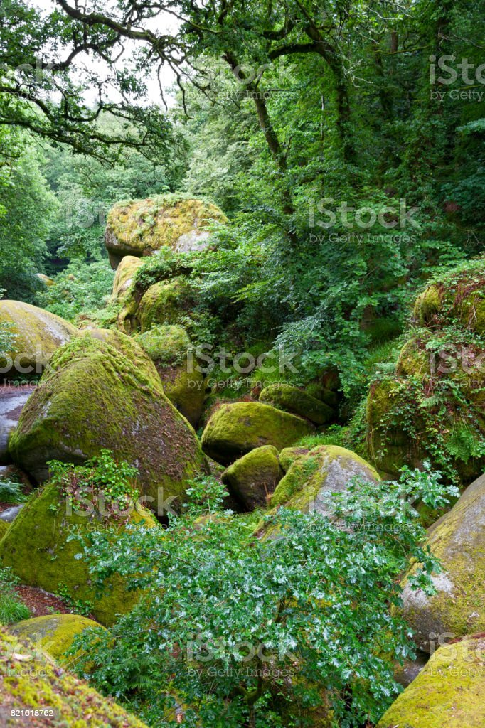 Forest of Huelgoat in Brittany stock photo