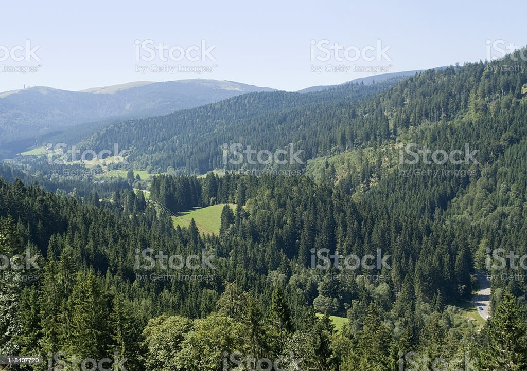 Forest on hills from high above stock photo