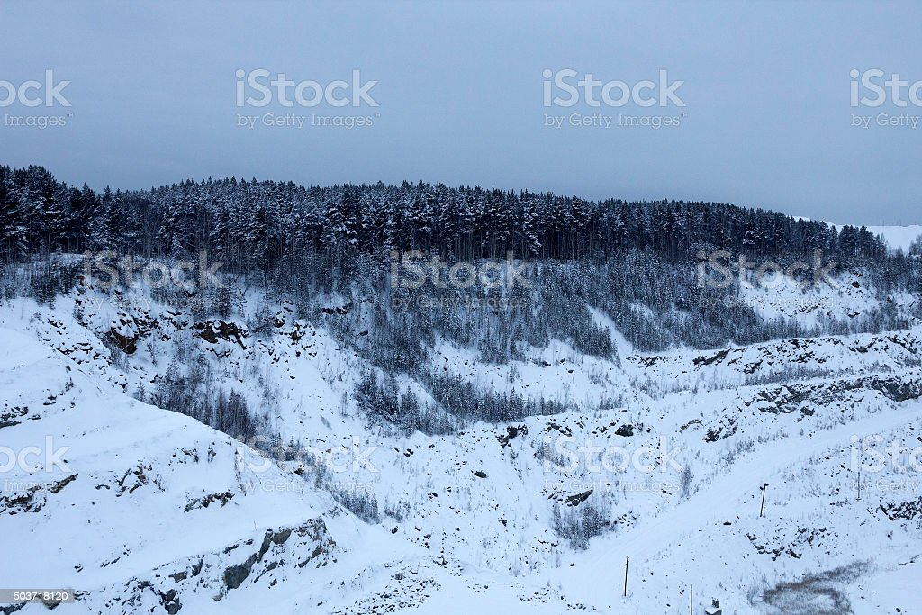 Forest on the edge of the quarry stock photo