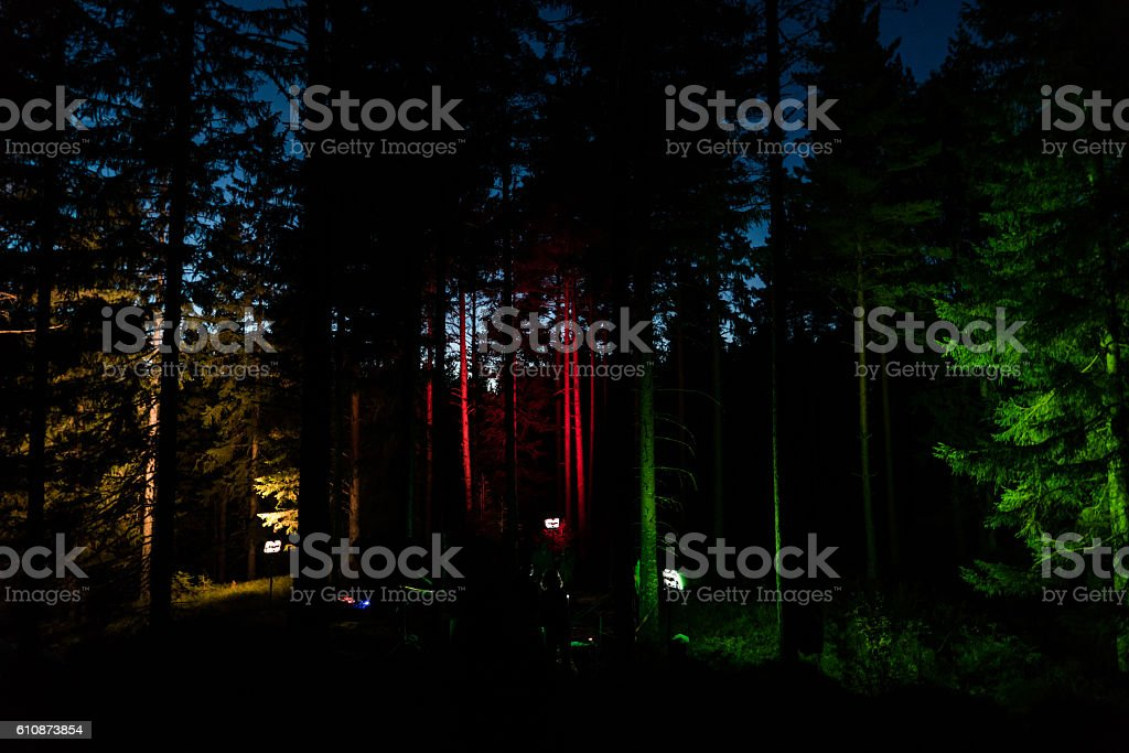 Forest Party stock photo