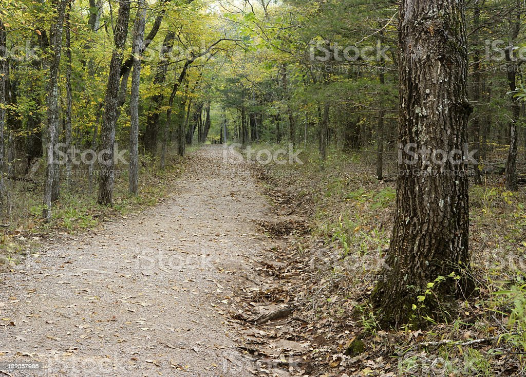 Forest Path in Oklahoma royalty-free stock photo