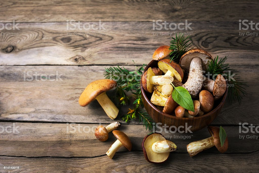 Forest picking mushrooms in the dark wooden bowl, top view stock photo
