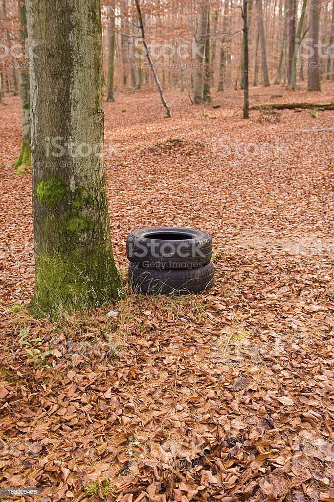 Forest Pollution royalty-free stock photo