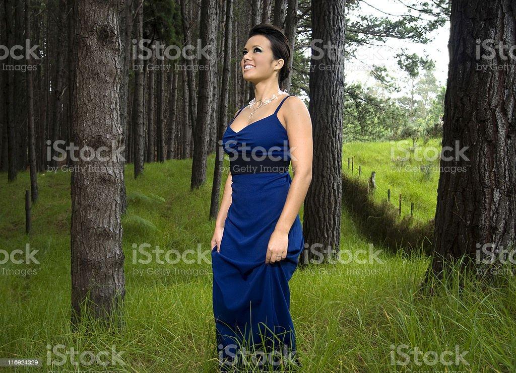 Forest Portrait. stock photo
