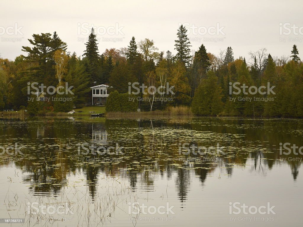 Forest reflected on a lake. stock photo