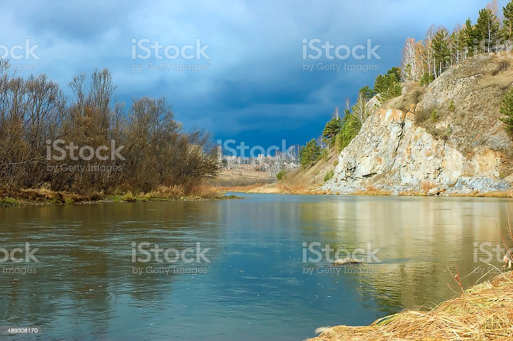 Forest river bank stock photo