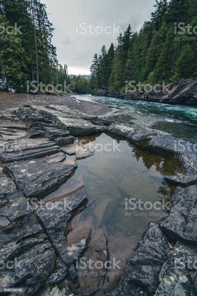Forest river reflected in a calm pool stock photo