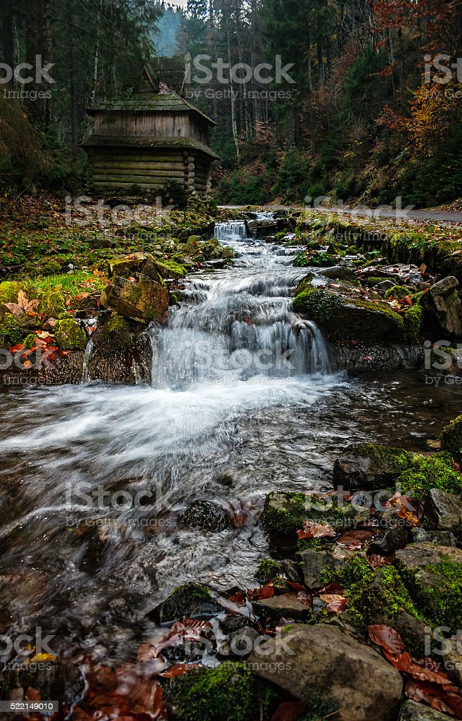 forest river with stones and moss stock photo