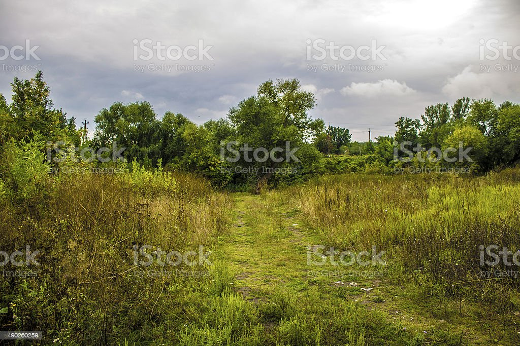 forest road summer green nature old far royalty-free stock photo