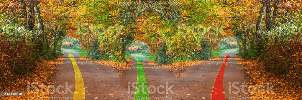 Forest road with three different ways stock photo