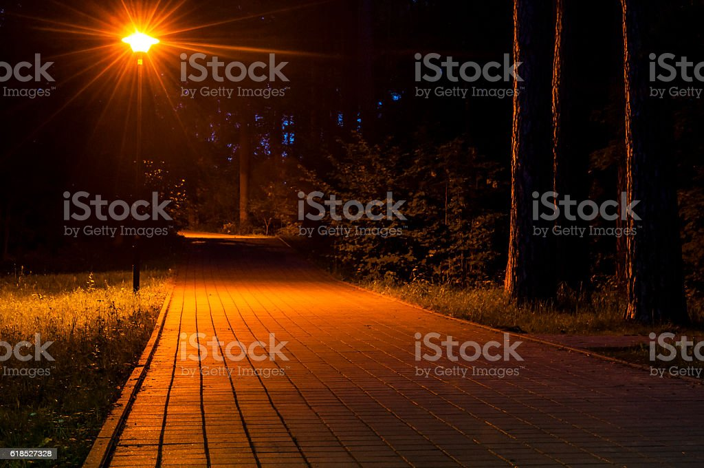 Forest sidewalk way at night. Street lantern illuminating footpath. stock photo