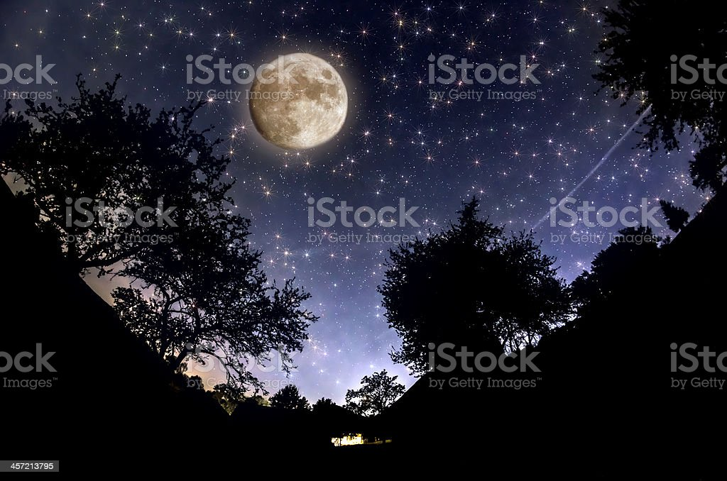 Forest silhouettes against a starry night sky stock photo