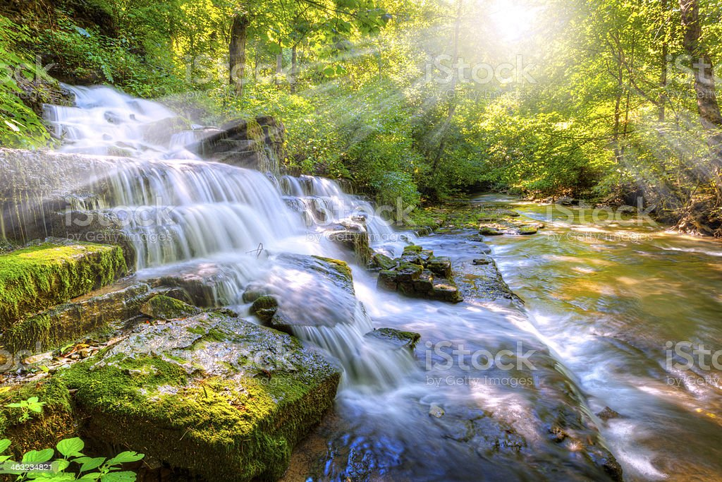 Forest stream and waterfall stock photo