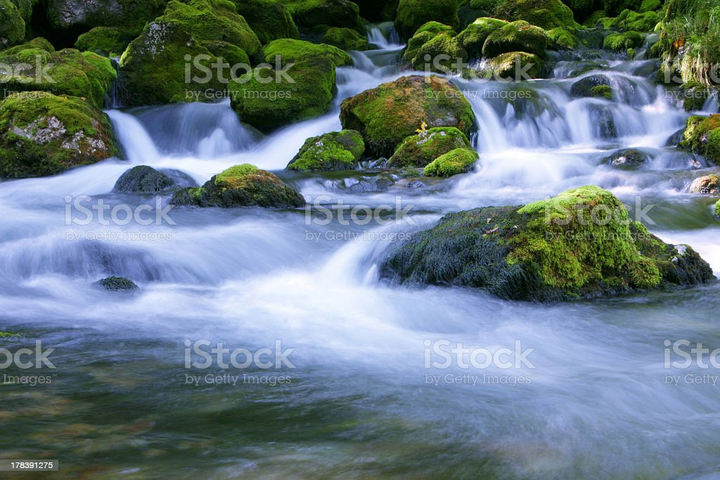 Forest stream with large rocks stock photo