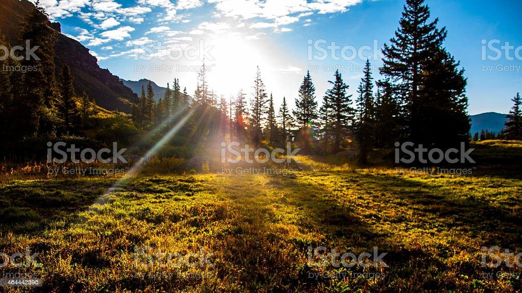 Forest Sun Beams Sunrise Mountain Bliss stock photo