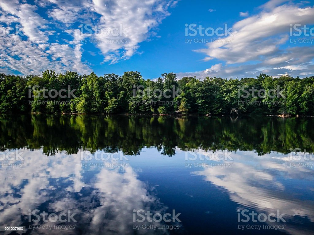 forest treeline reflections in catawba river stock photo