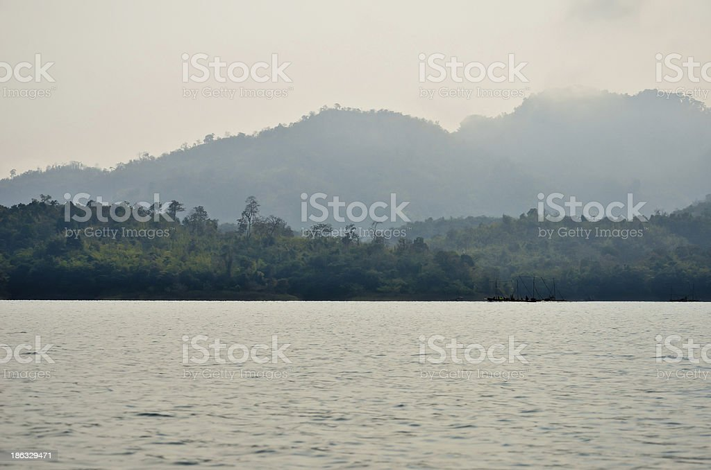Forest, water, tropical Thailand royalty-free stock photo