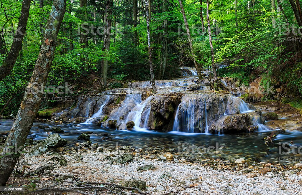 Forest waterfall and clear stream stock photo