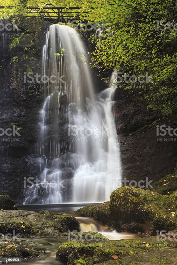Forest waterfall royalty-free stock photo