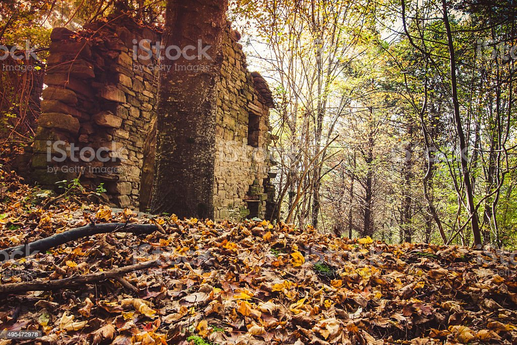 Foreste Casentinesi National Park, Italy stock photo
