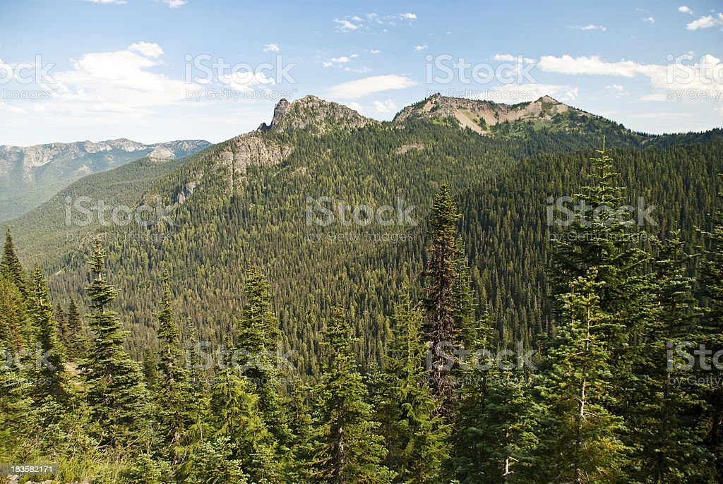 Forested Valley, Rock Peaks and Clouds stock photo