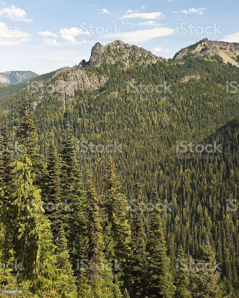 'Forested Valley, Rock Peaks and Clouds' stock photo