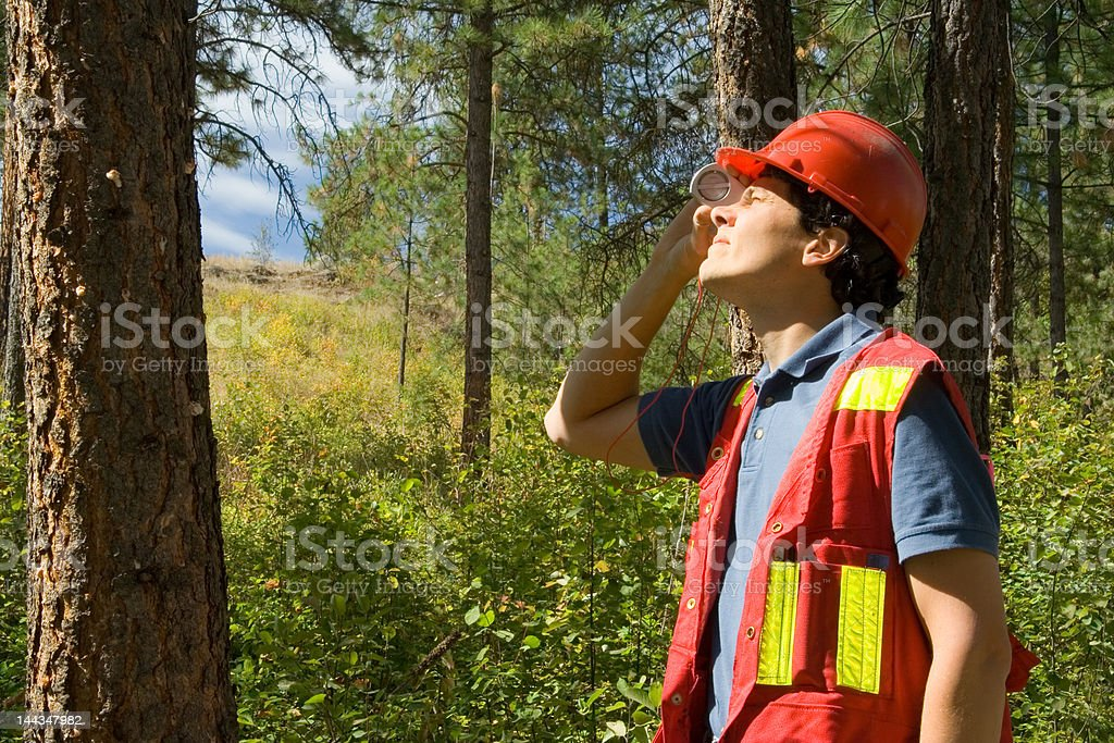 Forester / Arborist stock photo