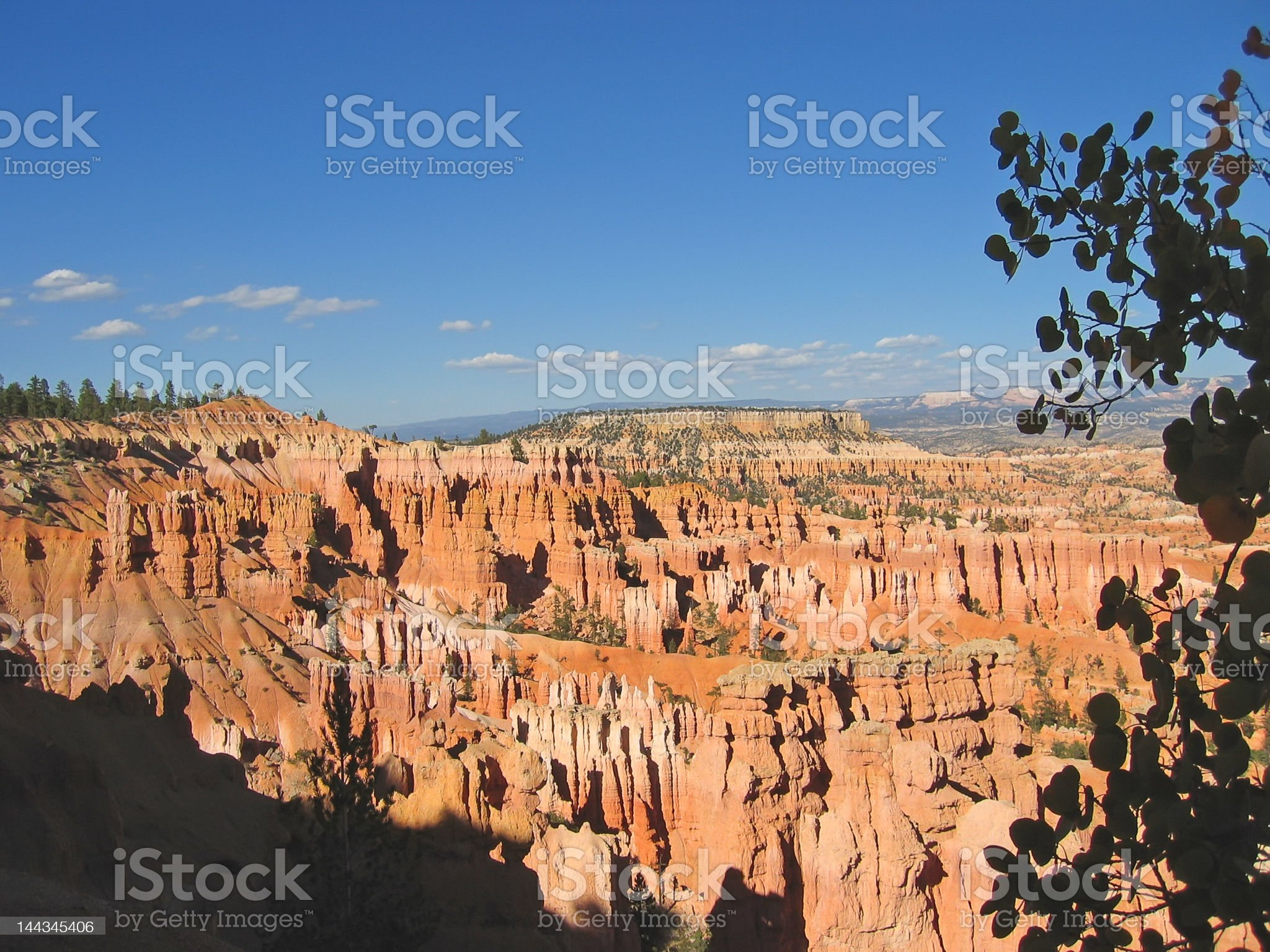 forest,of,red,and,white,peaks,bryce,national,park,united royalty-free stock photo