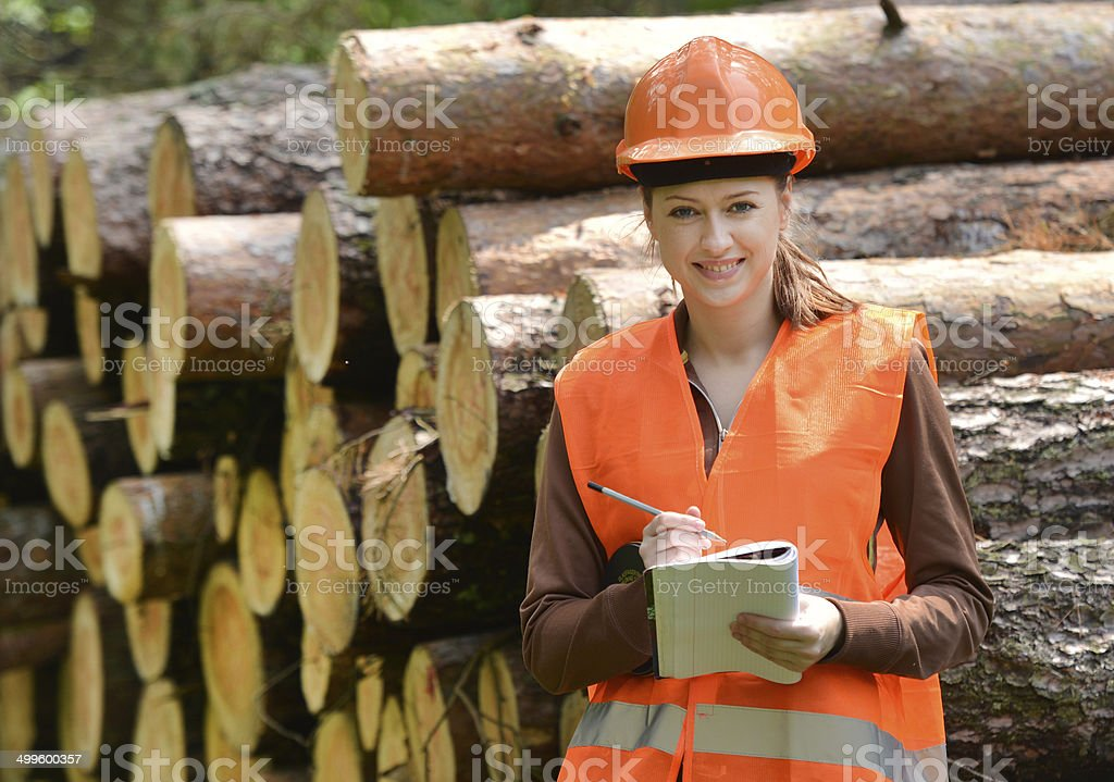 forestry engineer stock photo