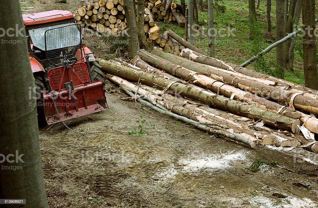 Forestry machinery - Lumber industry -- Hauling wood stock photo