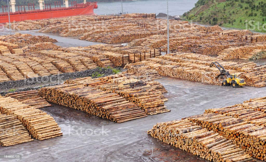 Forestry, Wood Industry stock photo