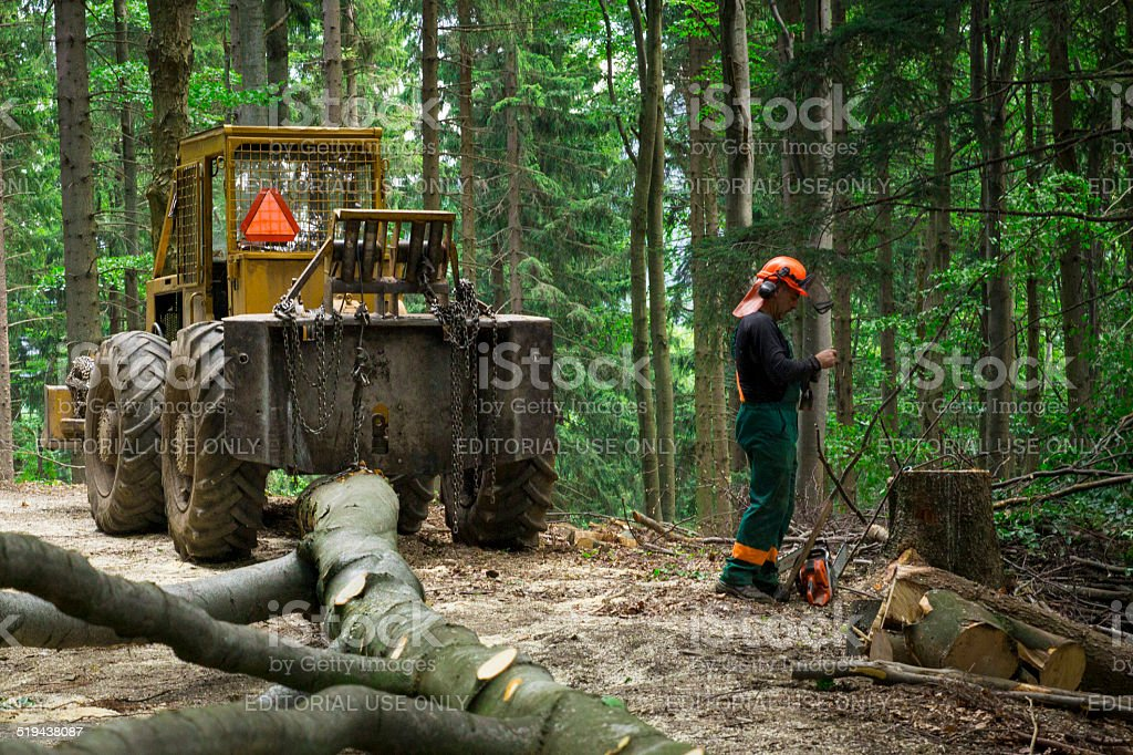 Forestry worker - Lumber industry - Hauling wood - Hard work stock photo
