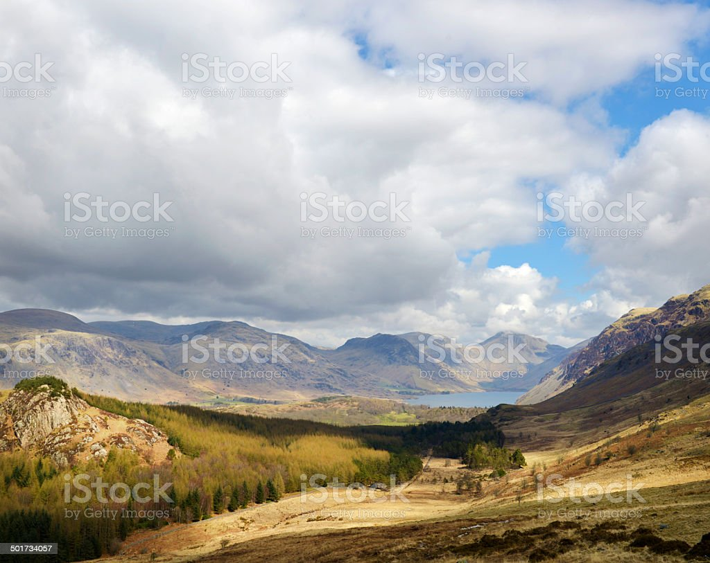 Forestry Workings in Cumbria stock photo