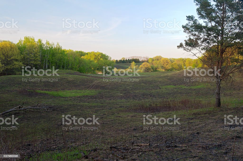 Forests and Fields of Battle Creek stock photo