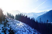 Forests and the Tatra mountains peaks