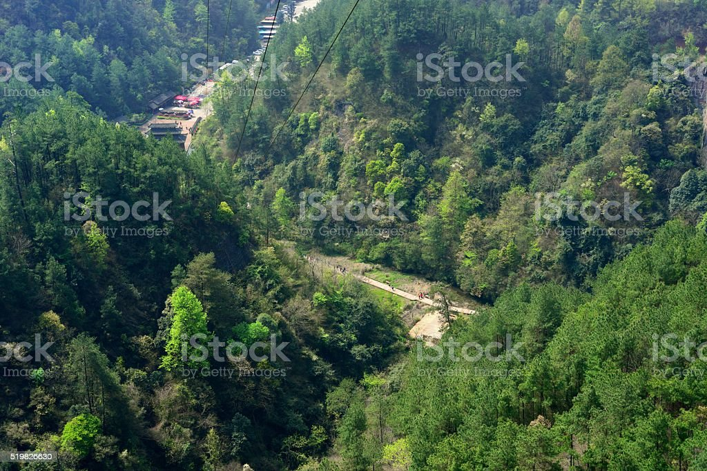 Forests cover danxia landform 01 stock photo