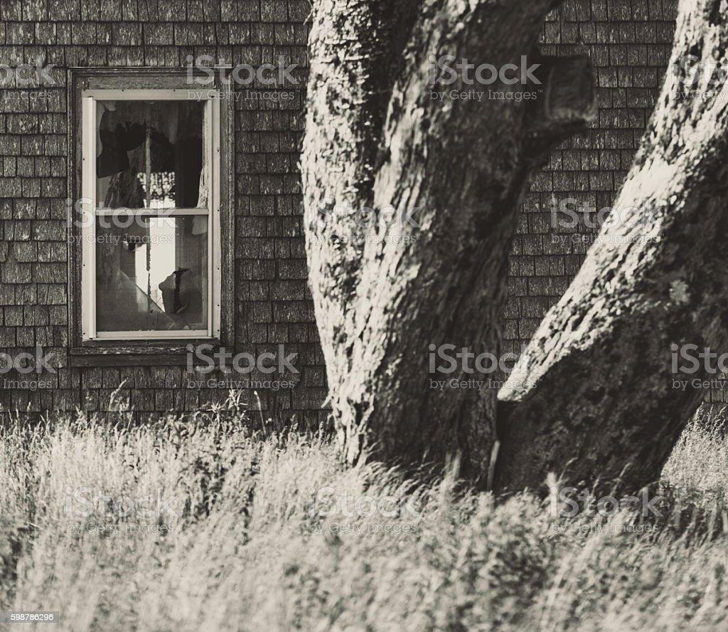 Forgotten Farm House stock photo