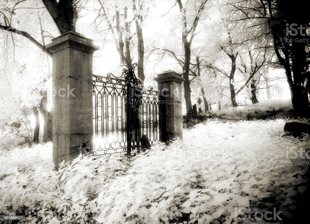Forgotten gate stock photo