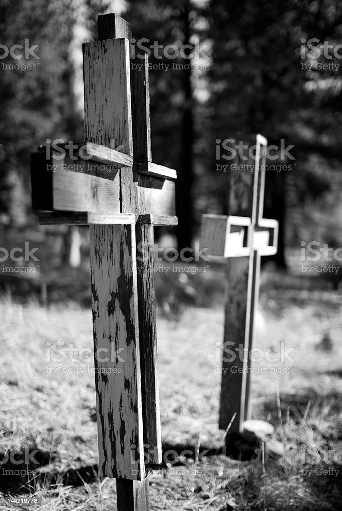 Forgotten Graves stock photo