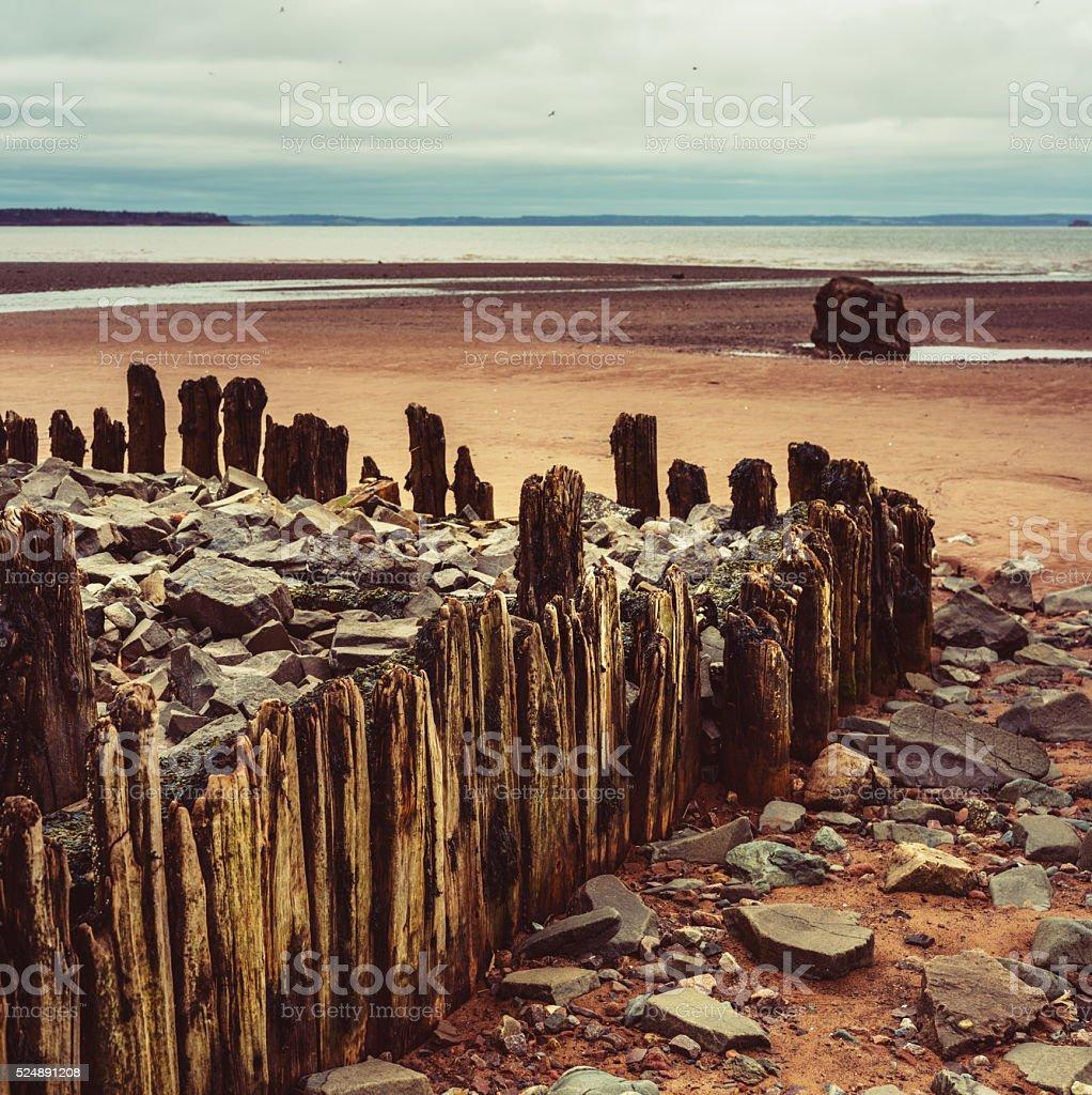 Forgotten Wharf stock photo